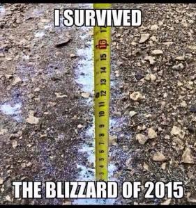 isurvivedblizzard